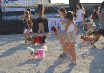 festival-canino-mascota-jardin-2016-122-1024x768