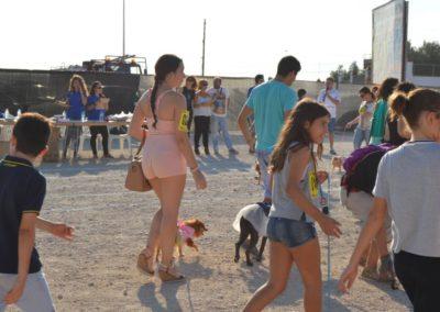 festival-canino-mascota-jardin-2016-135-1024x768