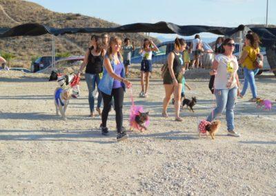 festival-canino-mascota-jardin-2016-140-1024x768