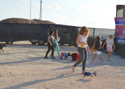 festival-canino-mascota-jardin-2016-150-1024x768