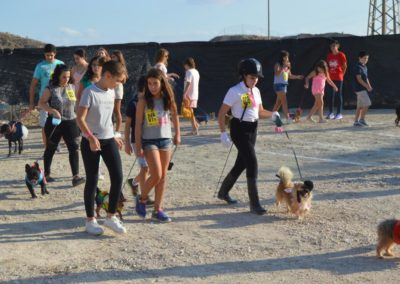 festival-canino-mascota-jardin-2016-166-1024x768