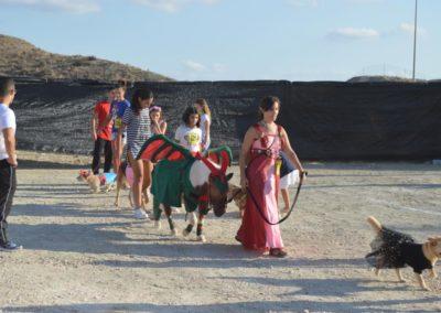 festival-canino-mascota-jardin-2016-170-1024x768
