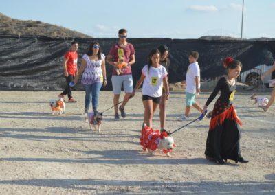 festival-canino-mascota-jardin-2016-175-1024x768
