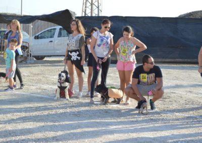 festival-canino-mascota-jardin-2016-186-1024x768