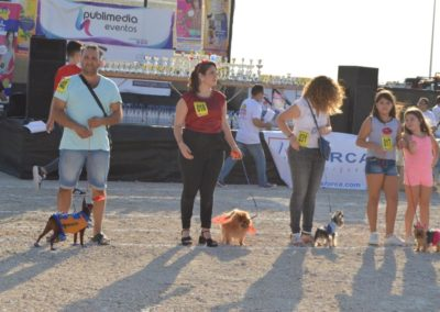 festival-canino-mascota-jardin-2016-189-1024x768