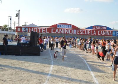 festival-canino-mascota-jardin-2016-244-1024x768