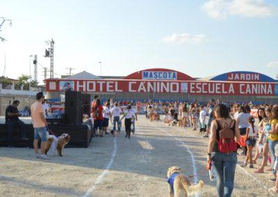 festival-canino-mascota-jardin-2016-247-1024x768