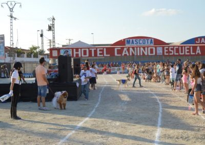 festival-canino-mascota-jardin-2016-249-1024x768