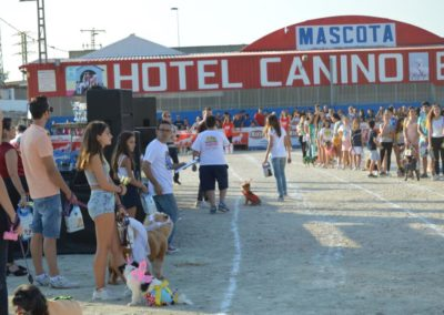 festival-canino-mascota-jardin-2016-264-1024x768