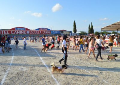 festival-canino-mascota-jardin-2016-268-1024x768