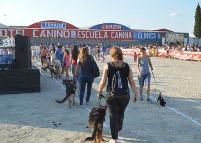 festival-canino-mascota-jardin-2016-274-1024x768