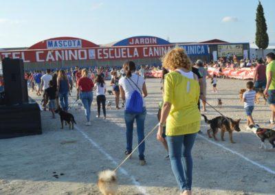 festival-canino-mascota-jardin-2016-276-1024x768