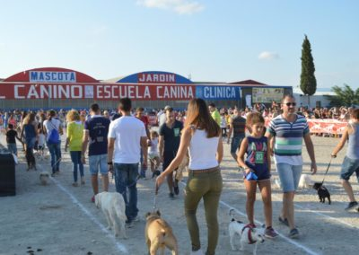 festival-canino-mascota-jardin-2016-277-1024x768