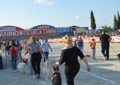festival-canino-mascota-jardin-2016-279-1024x768