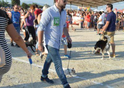 festival-canino-mascota-jardin-2016-281-1024x768