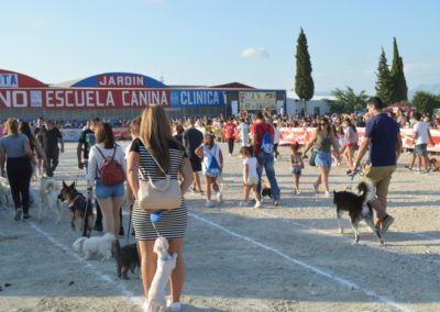 festival-canino-mascota-jardin-2016-283-1024x768