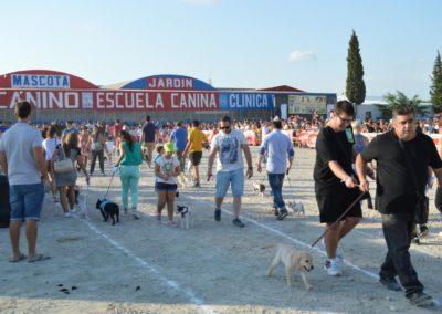 festival-canino-mascota-jardin-2016-287-1024x768