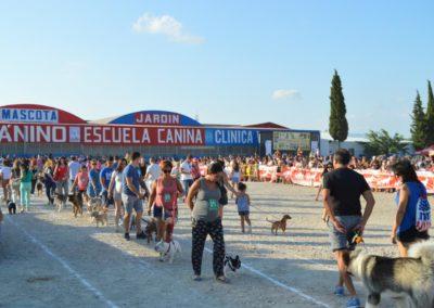 festival-canino-mascota-jardin-2016-290-1024x768