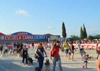 festival-canino-mascota-jardin-2016-293-1024x768