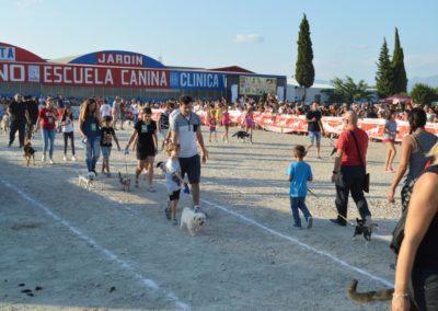 festival-canino-mascota-jardin-2016-295-1024x768