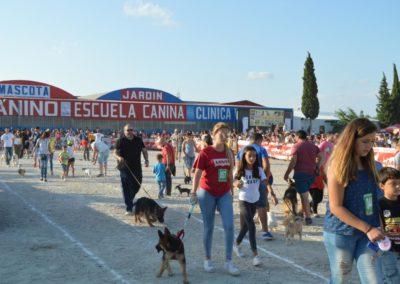festival-canino-mascota-jardin-2016-297-1024x768
