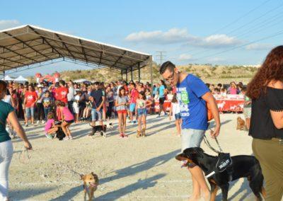 festival-canino-mascota-jardin-2016-304-1024x768