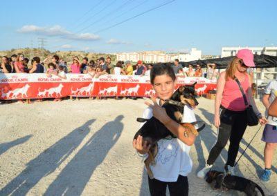 festival-canino-mascota-jardin-2016-307-1024x768