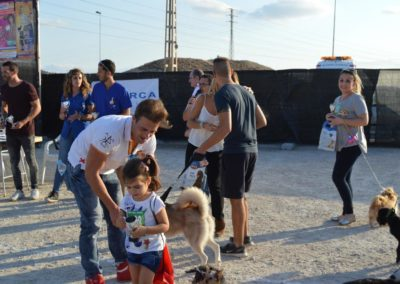 festival-canino-mascota-jardin-2016-339-1024x768