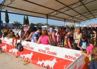 festival-canino-mascota-jardin-2016-39-1024x768