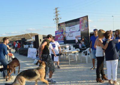 festival-canino-mascota-jardin-2016-401-1024x768