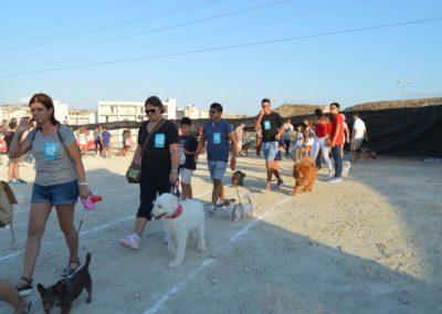 festival-canino-mascota-jardin-2016-417-1024x768