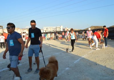 festival-canino-mascota-jardin-2016-418-1024x768