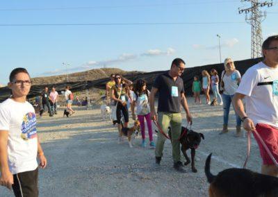 festival-canino-mascota-jardin-2016-462-1024x768