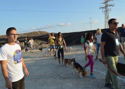 festival-canino-mascota-jardin-2016-463-1024x768