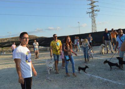 festival-canino-mascota-jardin-2016-464-1024x768