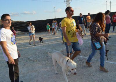 festival-canino-mascota-jardin-2016-465-1024x768