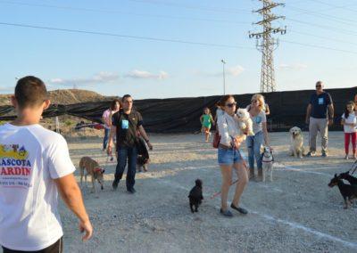 festival-canino-mascota-jardin-2016-466-1024x768