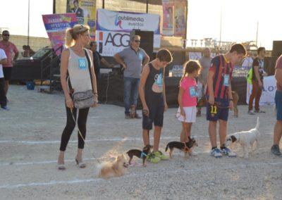 festival-canino-mascota-jardin-2016-471-1024x768