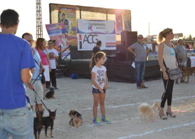 festival-canino-mascota-jardin-2016-474-1024x768