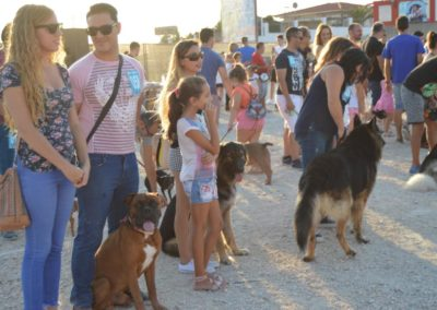 festival-canino-mascota-jardin-2016-478-1024x768