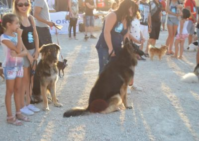 festival-canino-mascota-jardin-2016-479-1024x768