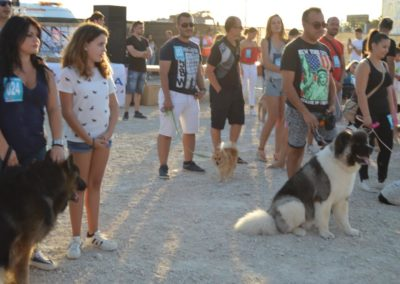 festival-canino-mascota-jardin-2016-480-1024x768
