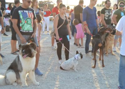 festival-canino-mascota-jardin-2016-481-1024x768