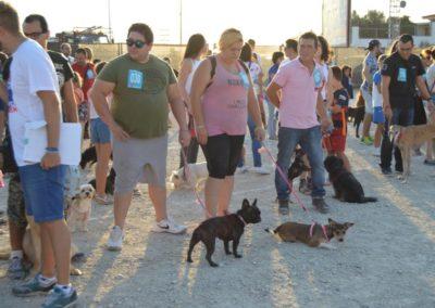 festival-canino-mascota-jardin-2016-483-1024x768