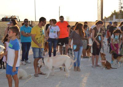 festival-canino-mascota-jardin-2016-486-1024x768