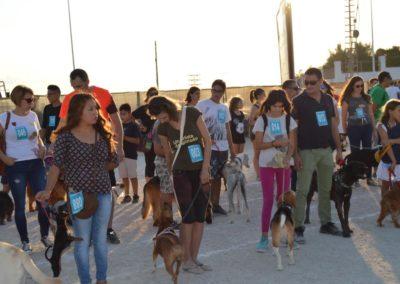 festival-canino-mascota-jardin-2016-487-1024x768