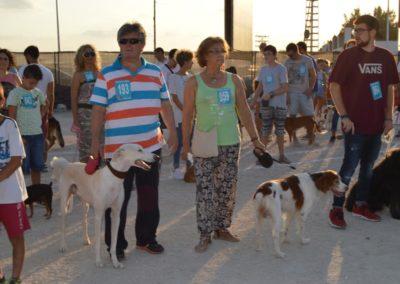 festival-canino-mascota-jardin-2016-491-1024x768