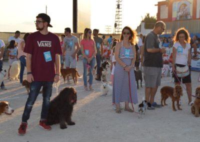 festival-canino-mascota-jardin-2016-492-1024x768