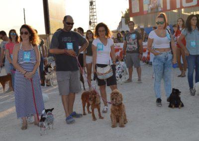 festival-canino-mascota-jardin-2016-493-1024x768