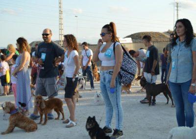 festival-canino-mascota-jardin-2016-495-1024x768